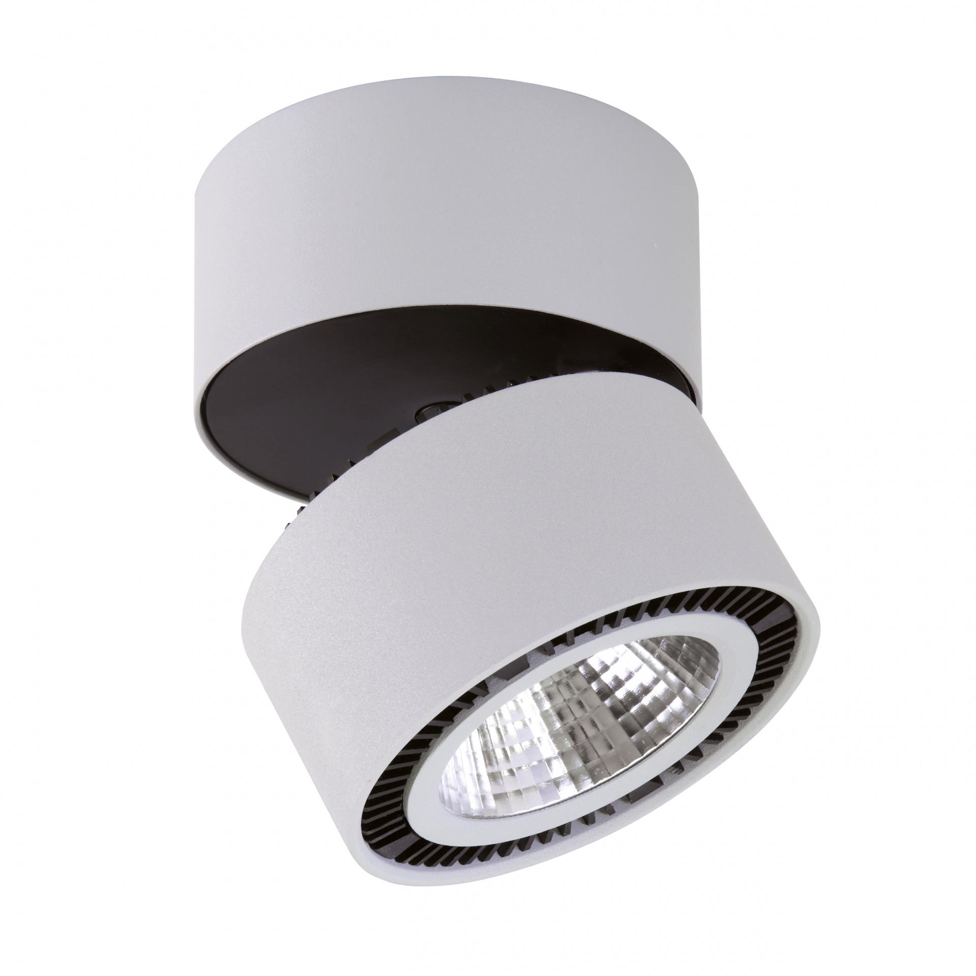 Светильник Forte Muro LED 40W 3400LM 30G серый 4000K Lightstar 214859, купить в СПб, Москве, с доставкой, Санкт-Петербург, интернет-магазин люстр и светильников Starlight, фото в жизни