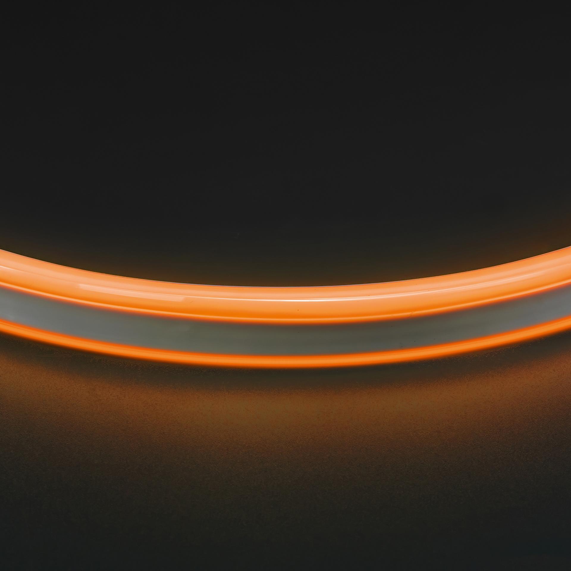 Лента гибкая неоновая NEOLED 220V 120 LED янтарный цвет IP65 Lightstar 430103, купить в СПб, Москве, с доставкой, Санкт-Петербург, интернет-магазин люстр и светильников Starlight, фото в жизни