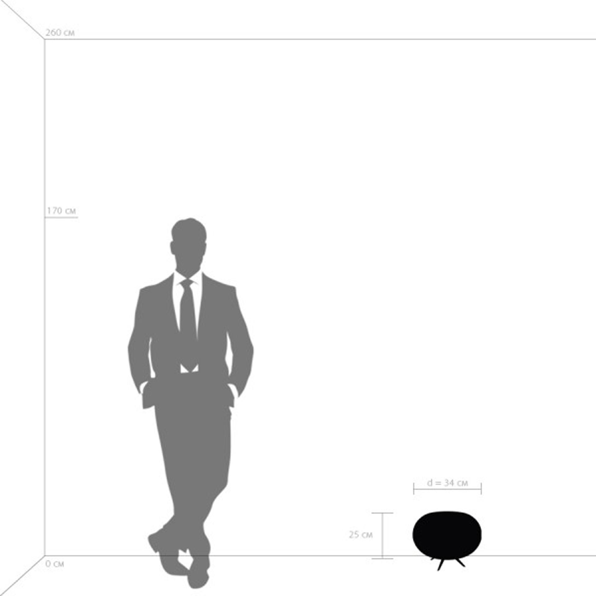 Настольная лампа Arnia 1Х40W E27 Коричневый / Белый Lightstar 805913, купить в СПб, Москве, с доставкой, Санкт-Петербург, интернет-магазин люстр и светильников Starlight, фото в жизни