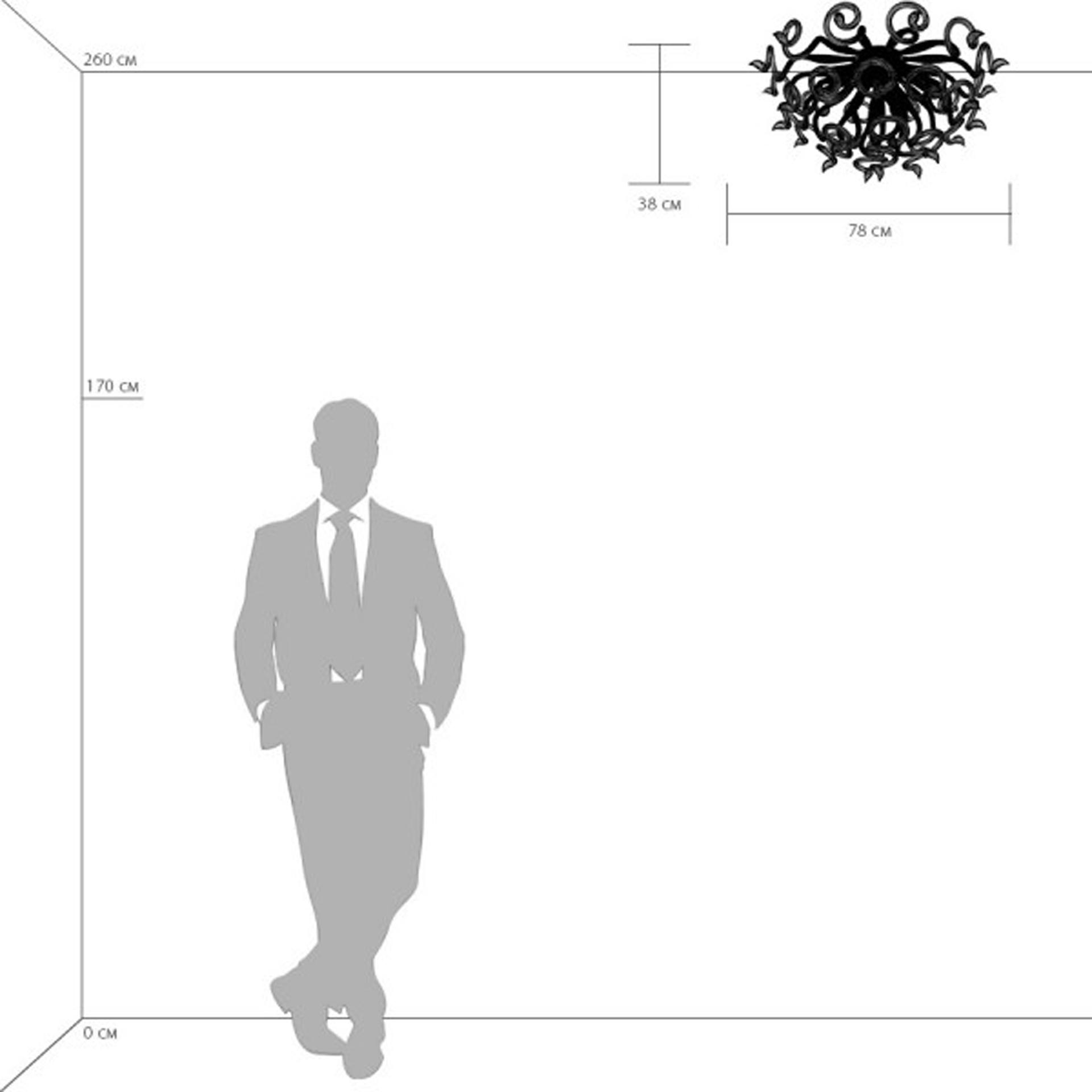 Люстра потолочная Lightstar Medusa 890090, купить в СПб, Москве, с доставкой, Санкт-Петербург, интернет-магазин люстр и светильников Starlight, фото в жизни